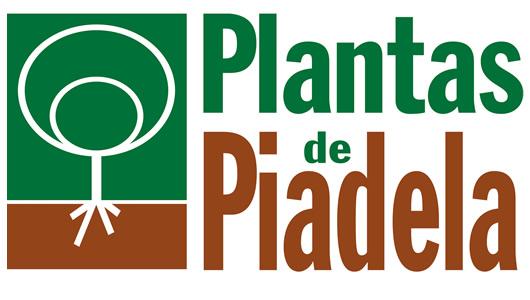 Plantas de Piadela