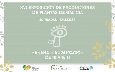 X Feria Arco Verde abre sus puertas mañana jueves en Amio